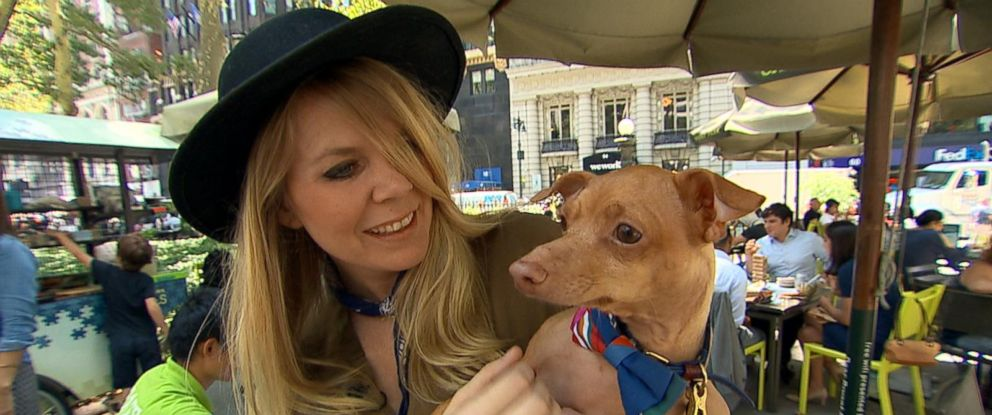 """PHOTO: The owners of some of the most influential animal social media stars shared their tips with """"Good Morning America"""" for how to turn your pet into a social media star."""