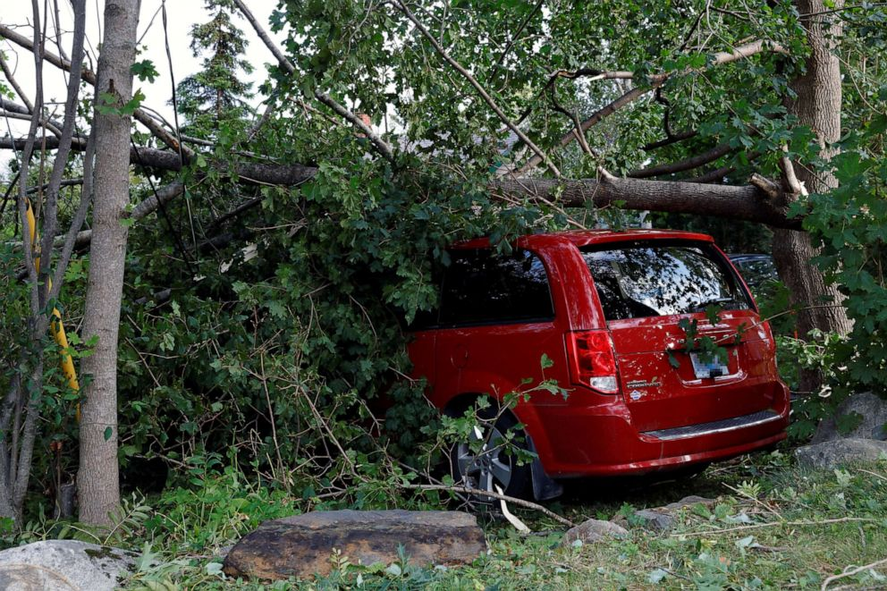 PHOTO: A tree lays on a mini-van after the departure of Hurricane Dorian in Halifax, Nova Scotia, Canada, Sept. 8, 2019.