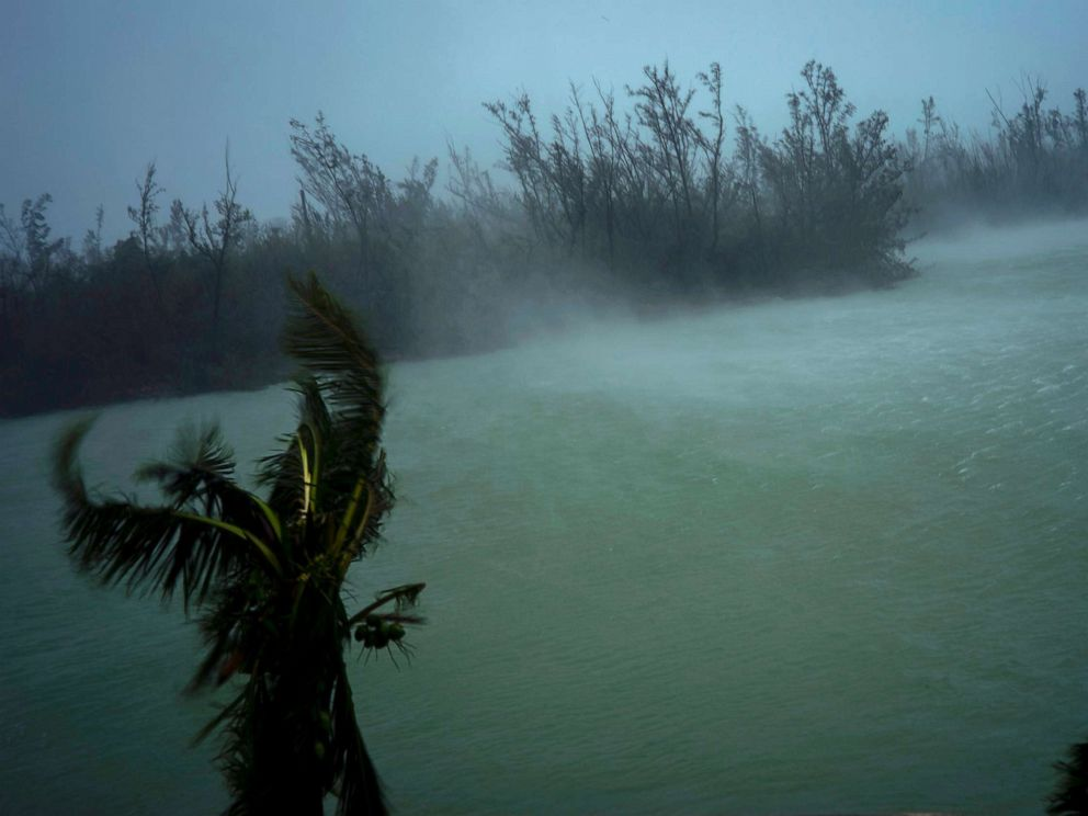 PHOTO: Strong winds from Hurricane Dorian blow the tops of trees and brush while whisking up water from the surface of a canal that leads to the sea, seen from the balcony of a hotel in Freeport, Grand Bahama, Bahamas, Sept. 2, 2019.
