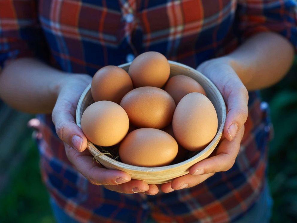 PHOTO: A woman displays a bowl of free range eggs in this undated stock photo.
