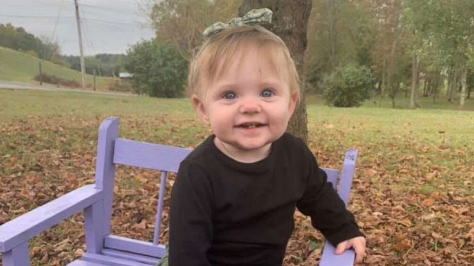 Remains of missing 15-month-old Evelyn Boswell found on family property:  Authorities - ABC News