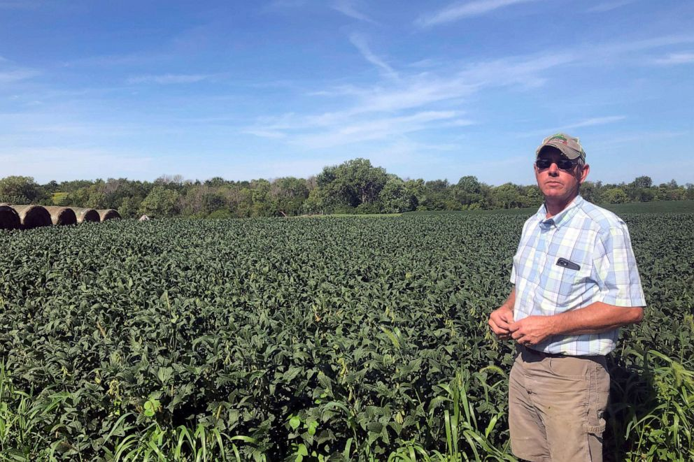 PHOTO: Farmer Randy Miller is shown with his soybeans, Thursday, Aug. 22, 2019, at his farm in Lacona, Iowa.