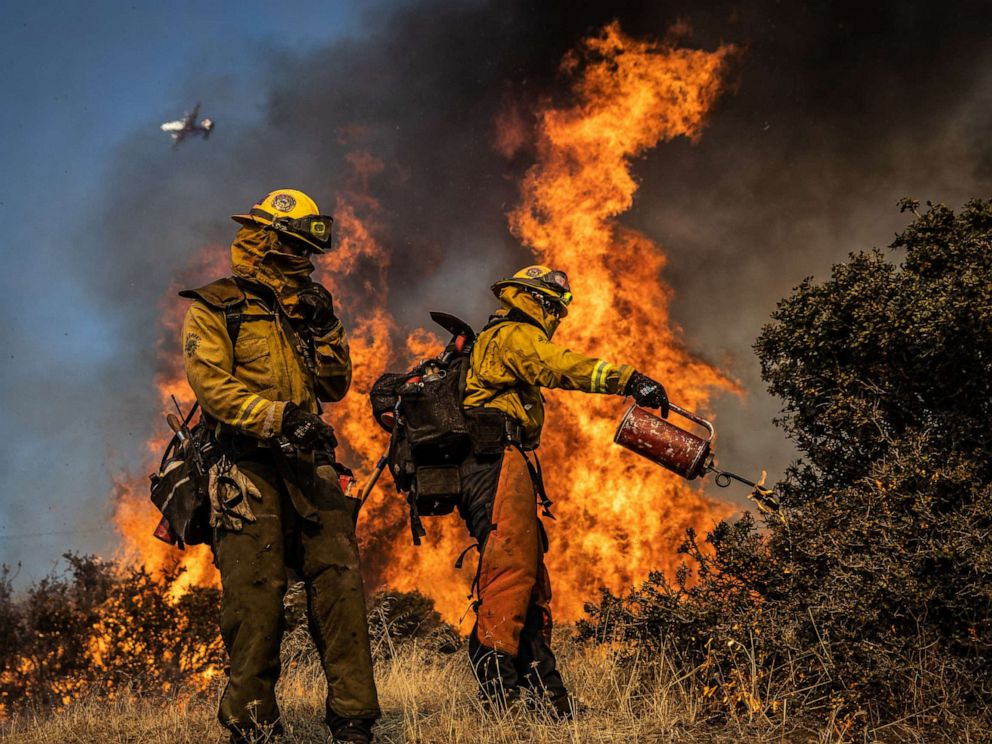 PHOTO: Firefighters with the Marin County Fire Department burn brush ahead of the Kincade Fire in an effort to reduce fuel and increase containment, in the Geysers, a geothermal field in California on Friday, Oct. 25, 2019.