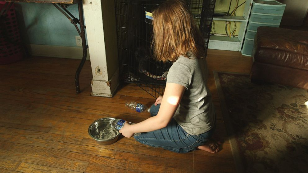 PHOTO: Eight-year-old Nala Uherek fills puppy Callies bowl with bottled water at the familys home in Flint, Mich.