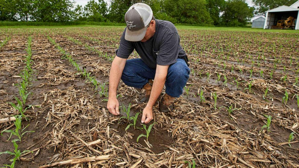 US farmers face historic delays from flooded fields amid Trump tariffs thumbnail