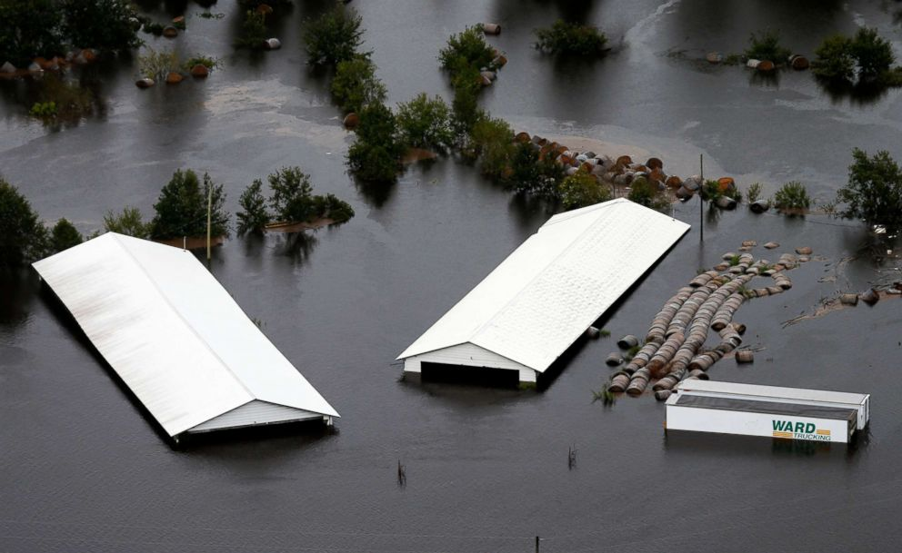 PHOTO: Hog farm buildings are inundated with floodwater from Hurricane Florence near Trenton, N.C., Sept. 16, 2018.