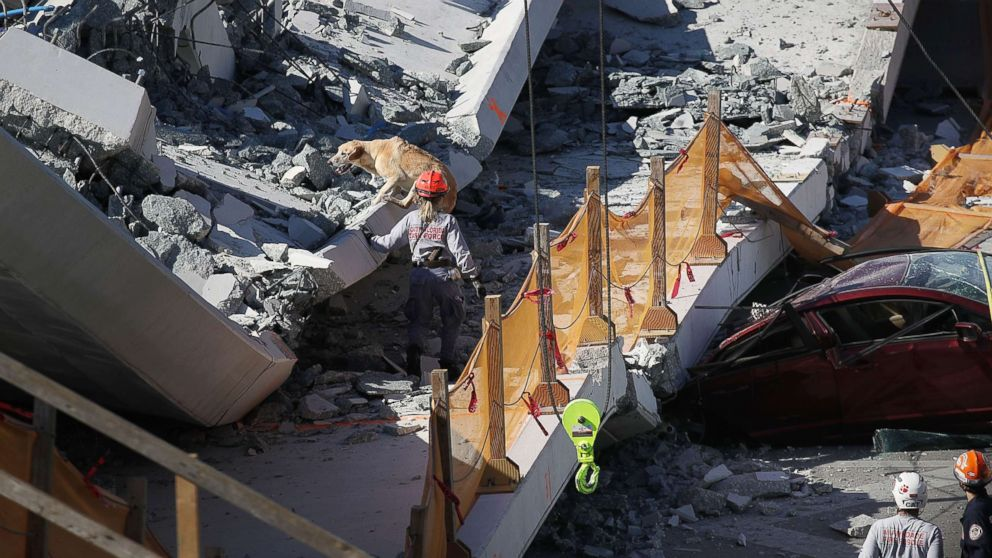 A rescue dog and its handler work at the scene where a pedestrian bridge collapsed at Florida International University on March 15, 2018 in Miami.