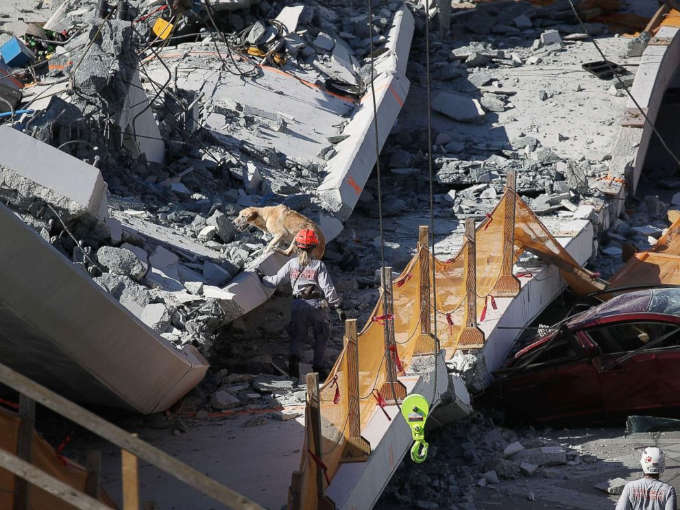 PHOTO: A rescue dog and its handler work at the scene where a pedestrian bridge collapsed at Florida International University on March 15, 2018 in Miami.