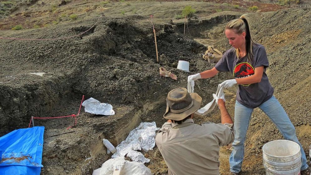 Robert DePalma (L) of the University of Kansas and field assistant Kylie Ruble (R) dig out fossil carcasses from the Tanis deposit on March 29, 2019.