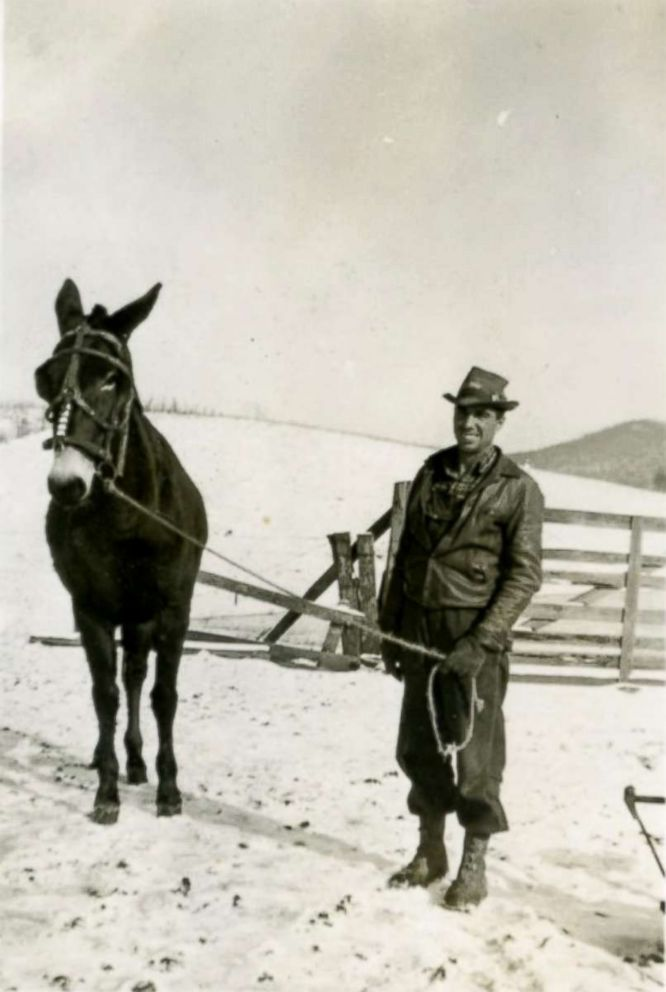 PHOTO: U.S. Army 1st Lt. Garlin M. Conner with his mule, Diner, in the 1950s.