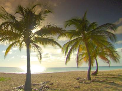 Weekend Window to Barbuda