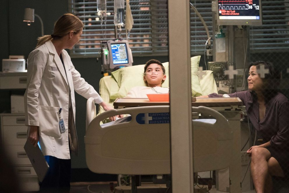 PHOTO: Ellen Pompeo from Greys Anatomy appears in the episode You Really Got a Hold on Me on the ABC Television Network.