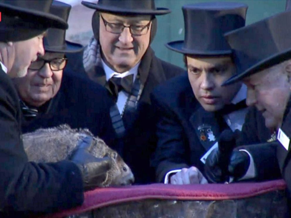 PHOTO: Punxsutawney Phil, the prognosticating groundhog, saw his shadow, forecasting six more weeks of winter weather during the celebration of Groundhog Day on Gobblers Knob in Punxsutawney, Penn., Feb. 2, 2018.