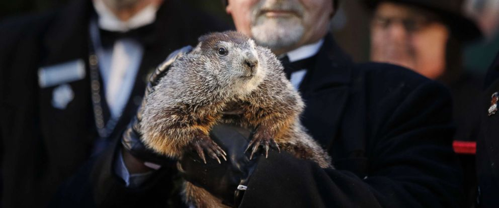 PHOTO: Groundhog Club co-handler John Grifiths holds Punsxutawney Phil the weather prognosticating groundhog during the Groundhog Day celebratio, in Punxsutawney, Penn., Feb. 2, 2018. Phil saw his shadow and predicted six more weeks of winter.