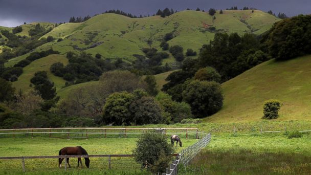 Before, after photos show California landscapes making a comeback from drought