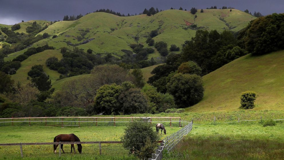 show california landscapes making  comeback  drought abc news