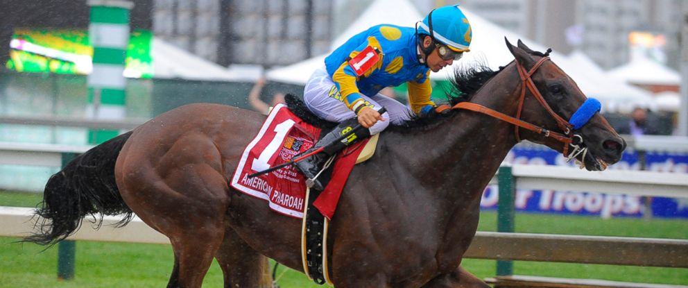 PHOTO: American Pharoah passes the 1/8 pole in the home stretch with a commanding lead during the 140th running of the Preakness Stakes, May 16, 2015, at Pimiico Race Course in Baltimore.