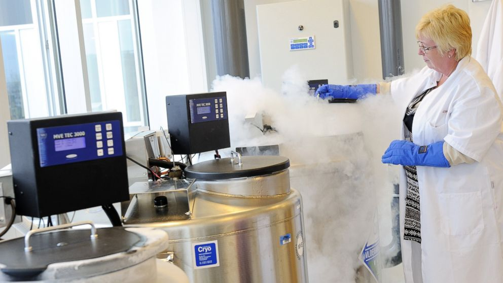 A technician opens a vessel containing women's frozen egg cells in this April 6, 2011 file photo taken in Amsterdam, Netherlands.
