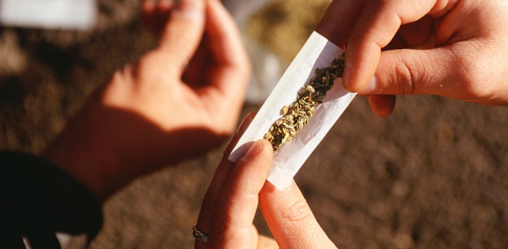 PHOTO: People rolling marijuana joints