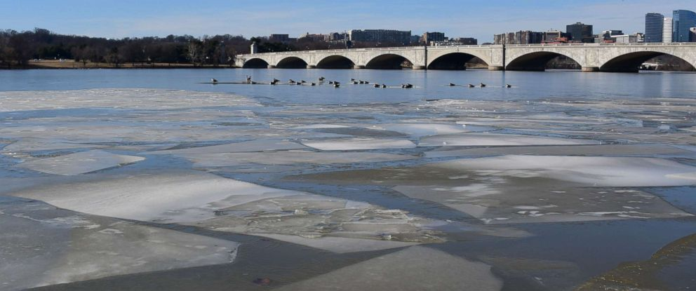 PHOTO: Birds rest on an ice patch on the Potomac River near the Memorial Bridge in Washington, DC January 20, 2018.