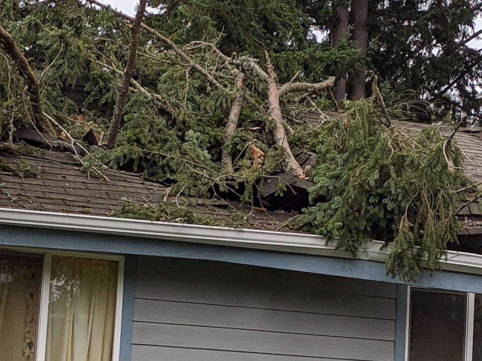 PHOTO: Aja Hauff was feeding her 1-month-old daughter, Ava, when the tree crashed through her home on Oct. 7, 2019 in Lakewood, Washington.
