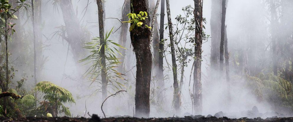 PHOTO: Steam and gas rise in Leilani Estates in the aftermath of the Kilauea volcano eruption on Hawaiis Big Island, May 10, 2018, in Pahoa, Hawaii.