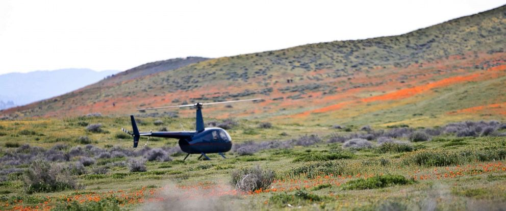 PHOTO: A helicopter landed in the Antelope Valley California Poppy Reserve, March 25, 2019.