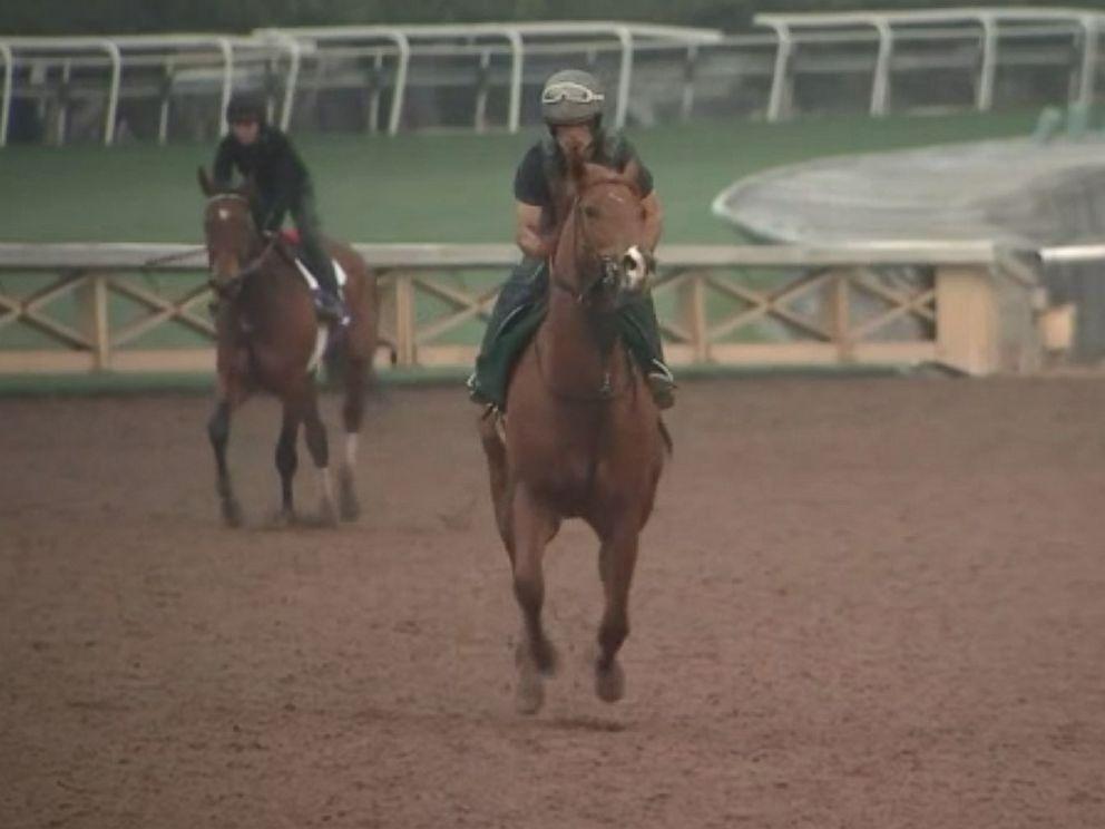 PHOTO: Horses continue to die at Santa Anita track in Arcadia, Calif.