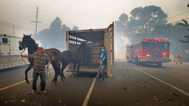 https://s.abcnews.com/images/US/horses-ca-wildfires-usa-hb-171206_16x9_608.jpg