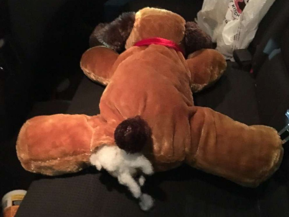 PHOTO: U.S Customs and Border Protection found methamphetamine hidden in packages inside a stuffed toy dog on Oct. 18, 2017.