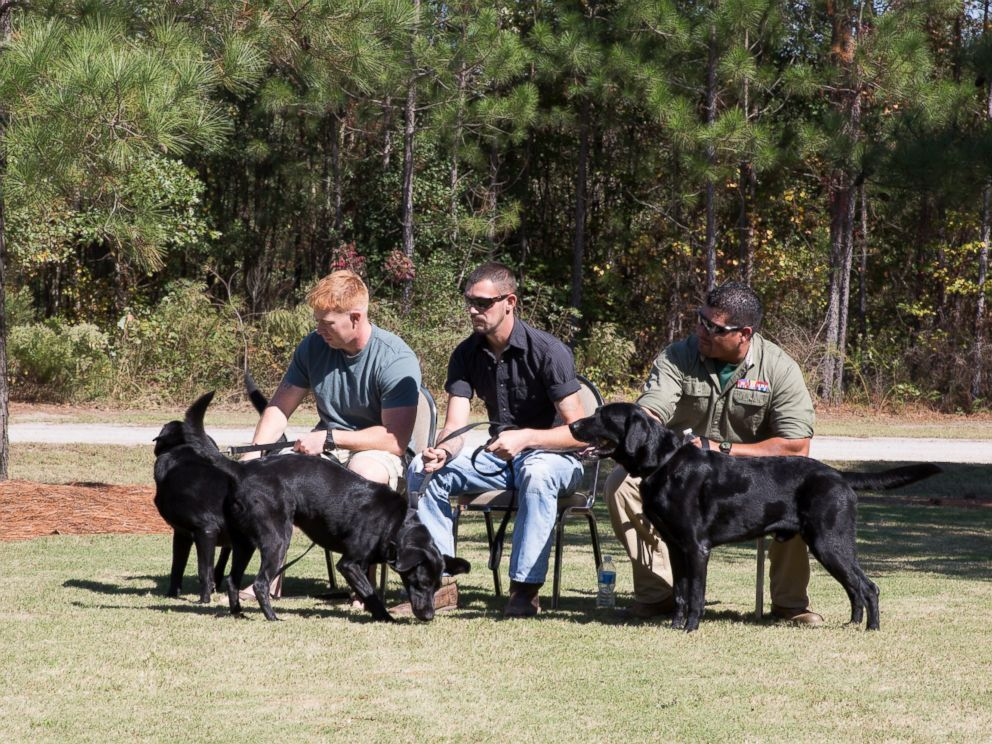 PHOTO: From right to left, Marines Sgt. Mark Slocum, Cpl. Stephen Kessler and Sgt. Chris Jaramillo, are pictured here reuniting with their war dogs on Oct. 14, 2015.