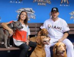 PHOTO: Animal activist pitcher Mark Buehrle wont move to Toronto in his latest trade because Ontario doesnt allow pitbulls.