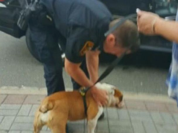 PHOTO: Police helped rescue a bulldog left in a hot car, July 27, 2015, in Tenafly, N.J.