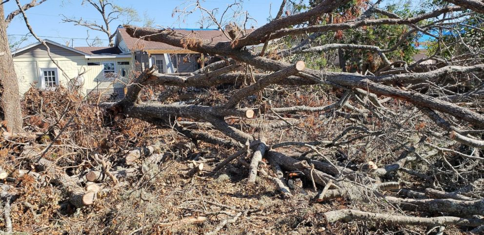 Rex Clark said he and his wife lost several trees and their home was destroyed during Hurricane Michael in Oct. 2018.