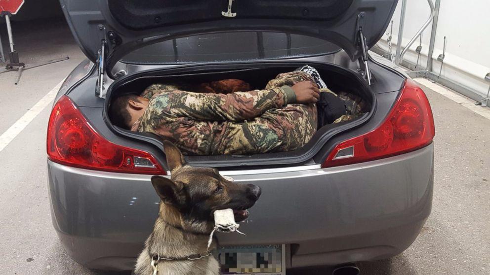 Does U S Border Patrol Use Dogs
