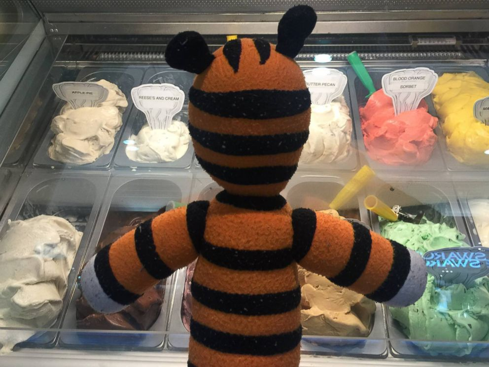 PHOTO: Employees at Tampa International Airport took photos with a stuffed animal that was accidentally left behind and later presented the owner of the toy, a six-year-old boy named Owen, with a book of the photos that depicted his adventures.