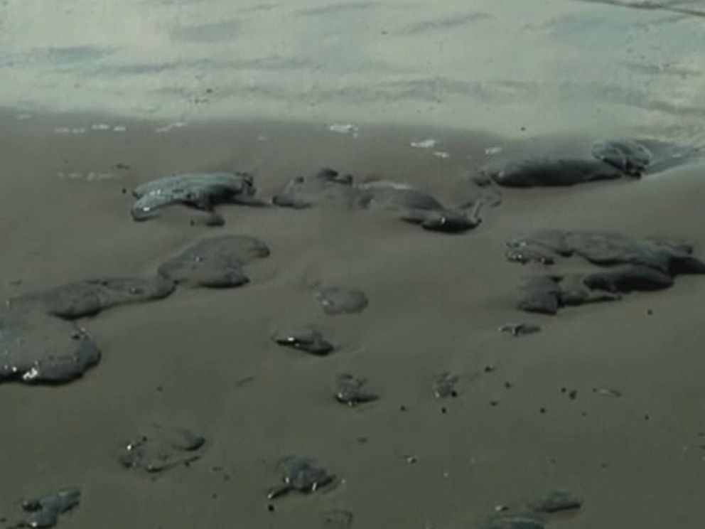 PHOTO: Tar balls are washing ashore on Texas beaches, near Mustang and Padre Islands, outside of Corpus Christie, Texas.