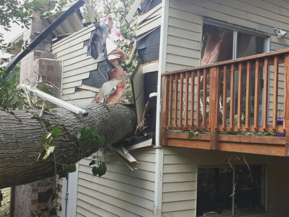 Falling Tree Splits Washington Home In Half Narrowly