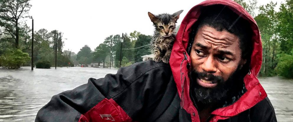 "PHOTO: Robert Simmons Jr. and his kitten ""Survivor"" are rescued from floodwaters after Hurricane Florence dumped several inches of rain in the area overnight, Sept. 14, 2018 in New Bern, N.C."
