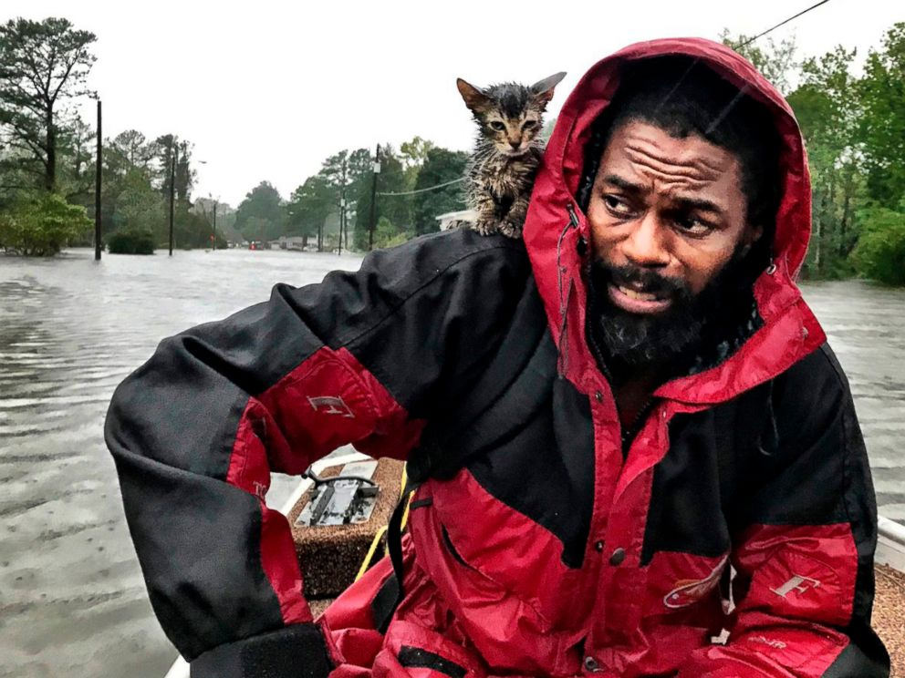 PHOTO: Robert Simmons Jr. and his kitten Survivor are rescued from floodwaters after Hurricane Florence dumped several inches of rain in the area overnight, Sept. 14, 2018 in New Bern, N.C.