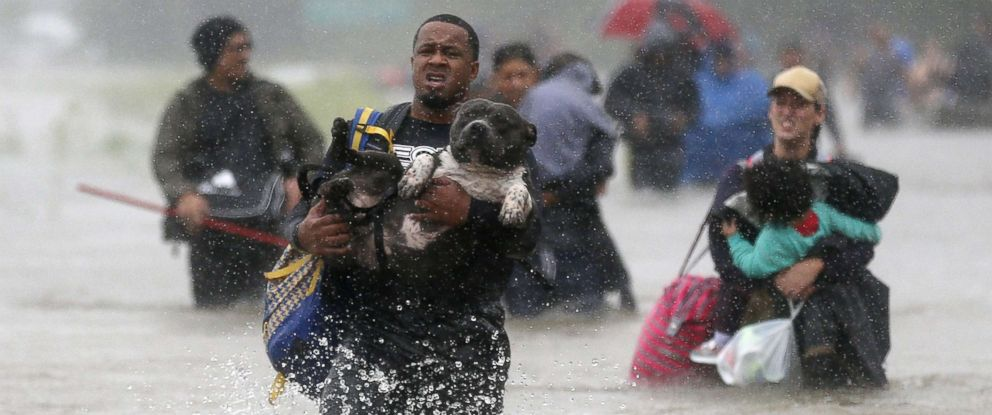 PHOTO: Isiah Courtney carries his dog Bruce through flood waters from Tropical Storm Harvey in Beaumont Place, Texas, Aug. 28, 2017.