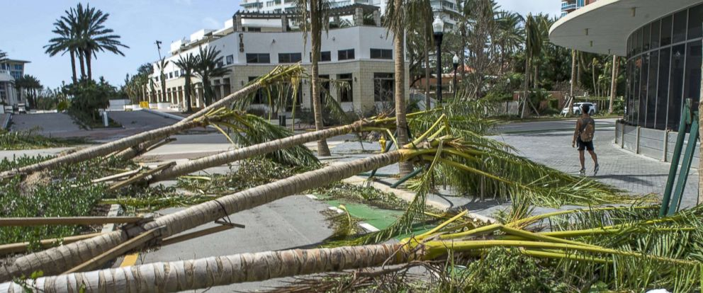 PHOTO: Fallen trees block a street after the passing of Hurricane Irma in Miami Beach, Sept. 11, 2017.
