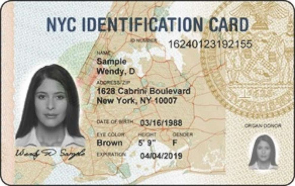 PHOTO: New York Identification Card is pictured in this undated photo.