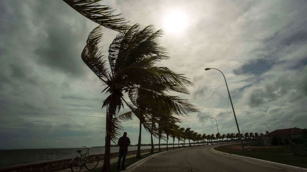 Winds brought by Hurricane Irma blow palm trees lining the seawall in Cuba, Sept. 8, 2017.