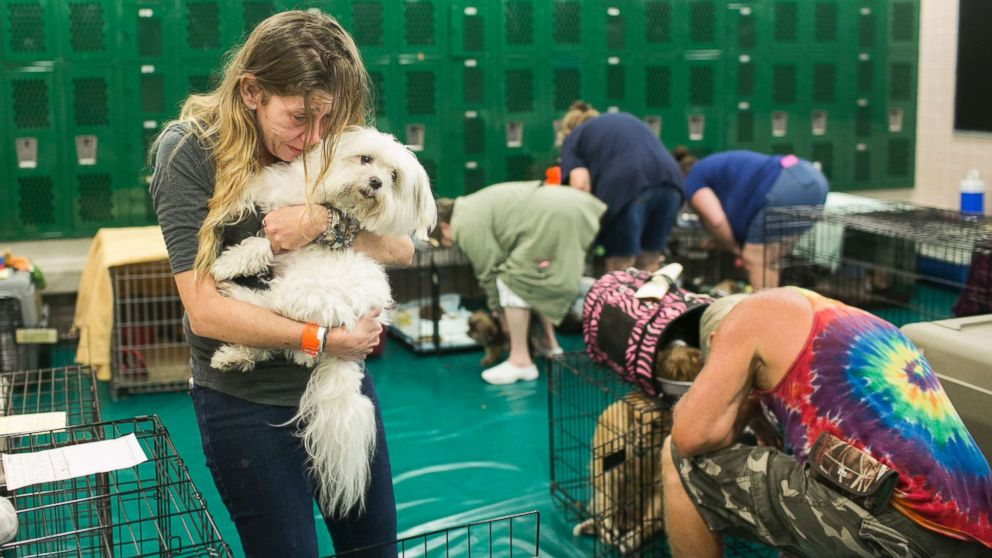 Samantha Belk says goodbye to her maltese, Gardolf until after the hurricane in a locker room at John Hopkins Middle School on Sunday, Sept. 10, 2017, in St. Petersburg, Fla. The school filled classrooms and hallways with people evacuating before Hurricane Irma makes landfall. The shelter welcomes people from the area with pets and those with special needs. Owners were told as the tropical storm winds began to say goodbye to their pets until after the hurricane Irma was over.