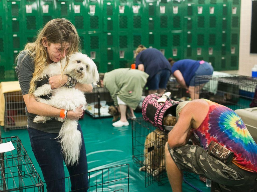 PHOTO: Samantha Belk says goodbye to her maltese, Gardolf until after the hurricane in a locker room at John Hopkins Middle School on Sunday, Sept. 10, 2017, in St. Petersburg, Fla.