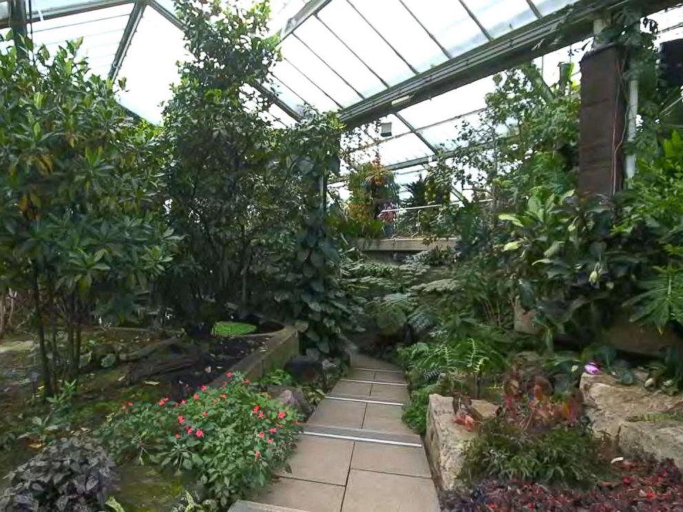 How the Royal Botanic Gardens, Kew is creating natural beauty ...