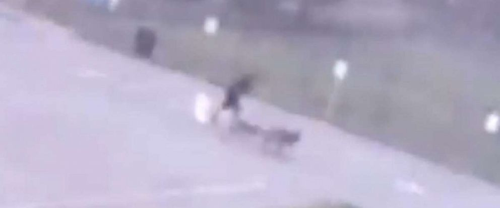 PHOTO: Surveillance video obtained by Houston ABC station KTRK shows the moment a man walking his dogs is struck by lightning in Spring, Texas, Sept. 3, 2019.