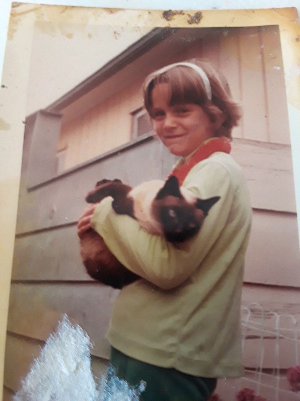 e9c2ada713f6af DNA leads to man s arrest 46 years after murder of 11-year-old Linda  O Keefe   We have never forgotten Linda  - ABC News