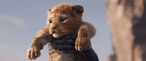 The Lion King Official Teaser Trailer Is Here Abc News